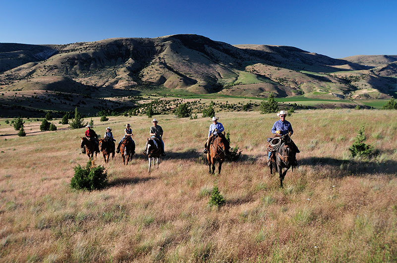Wilson Ranches Retreat Fossil Oregon Bed And