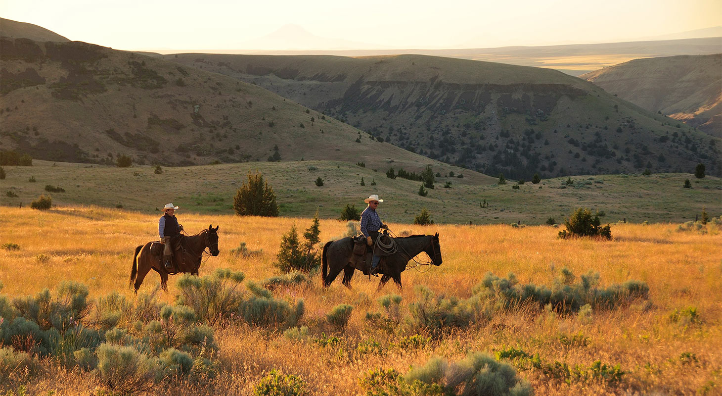 Two Cowboys riding horses in an open field