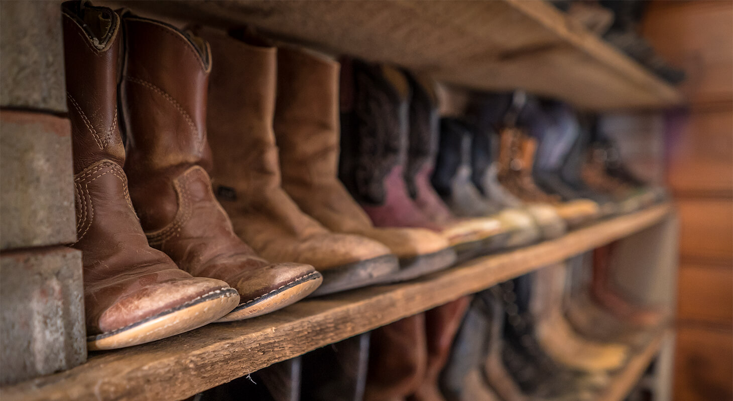 Cowboy boots on a shelf