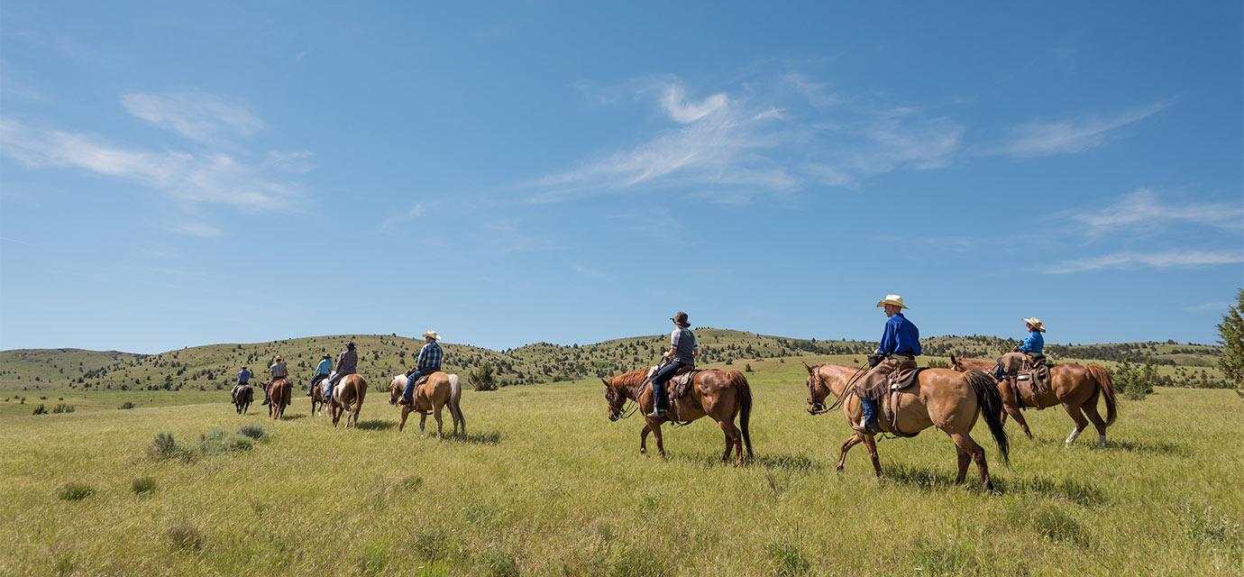 Group Horseback Riding