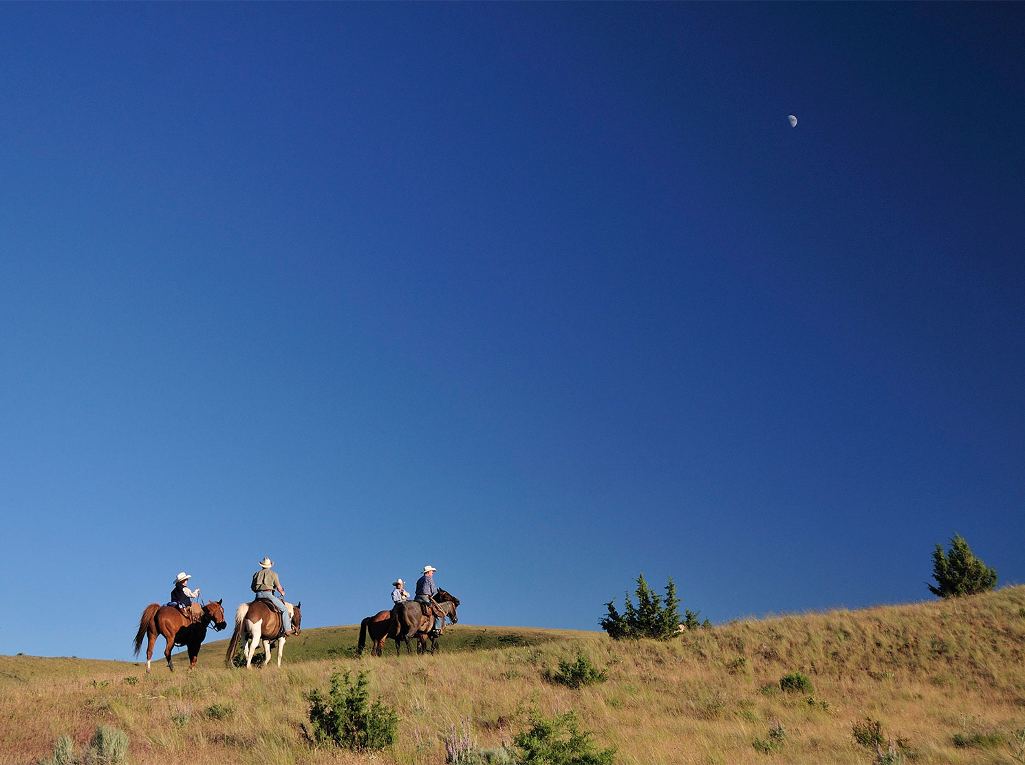 Group of riders and moon