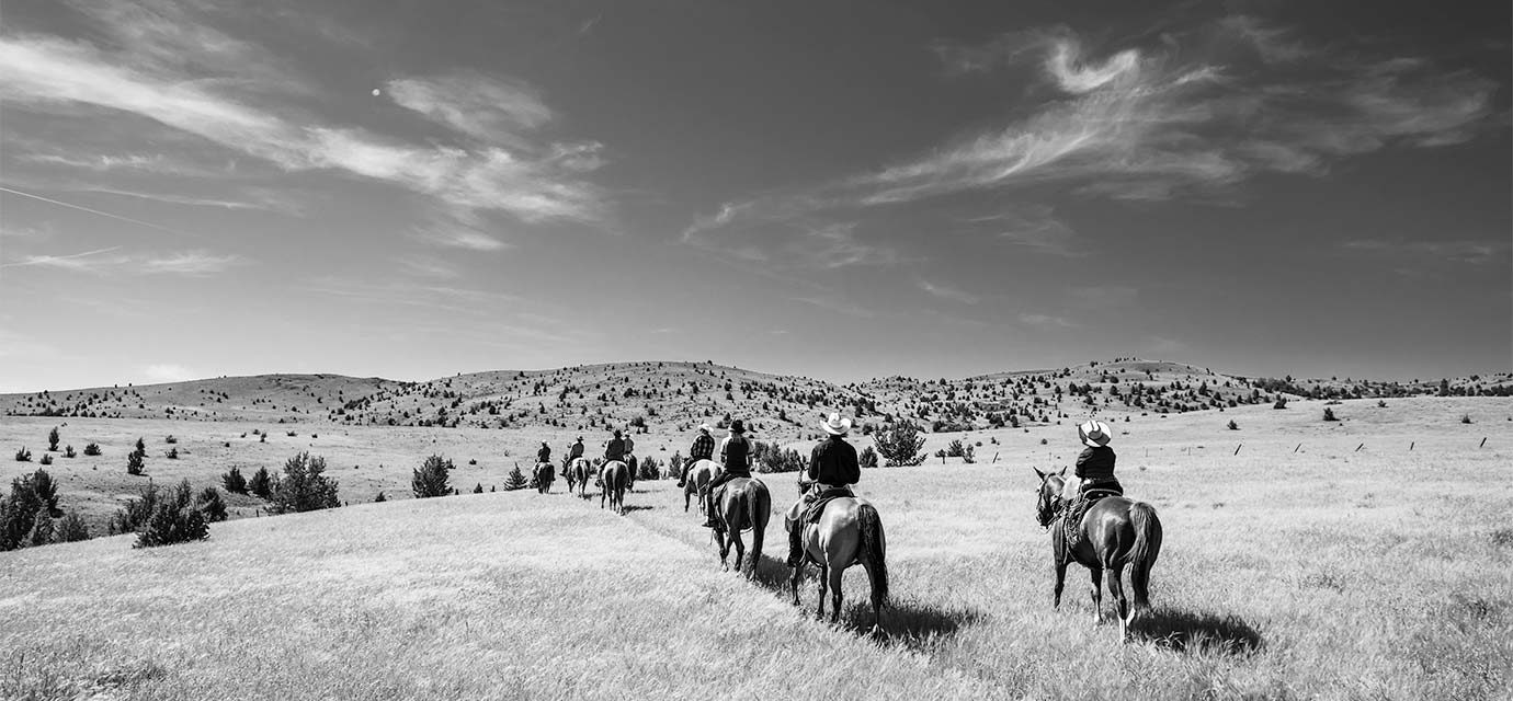 Group on horseback riding through an open range