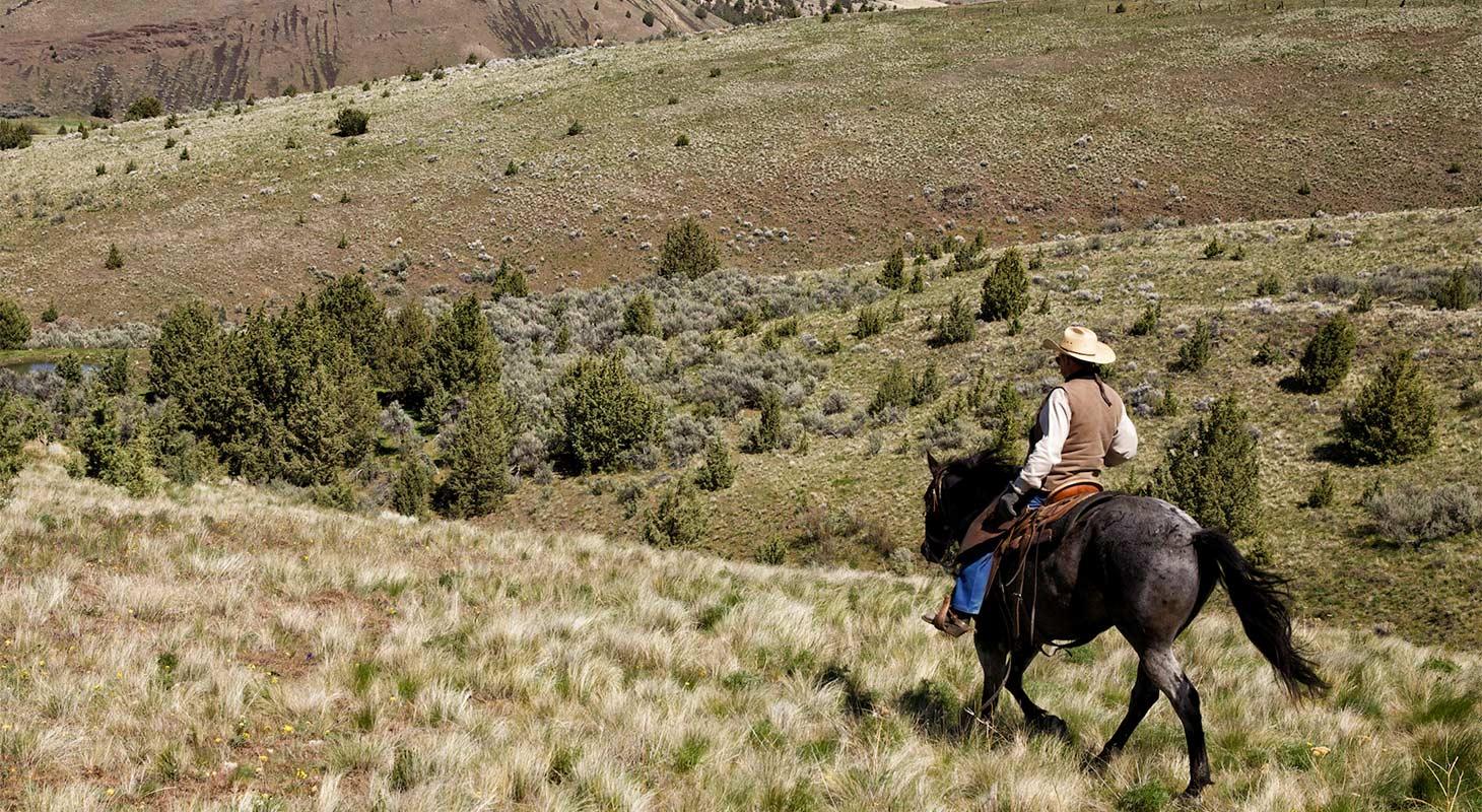 Rancher riding on horseback