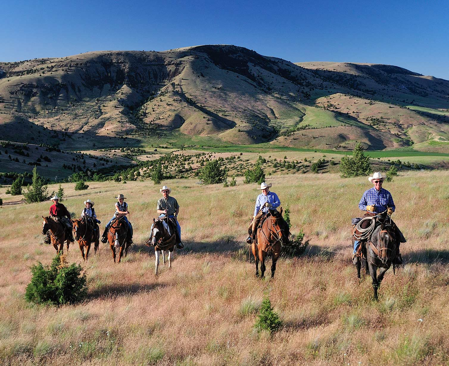 Six on horseback riding on a grassy plain
